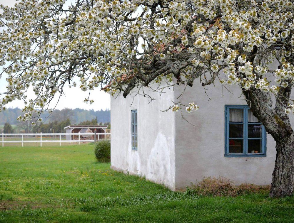 GotlandsDjurpark-Gotland-Eskelhem